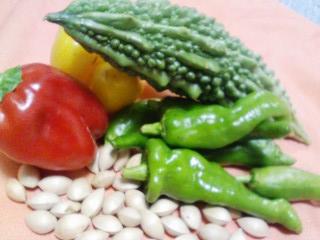 コタヤ農園さんのお野菜