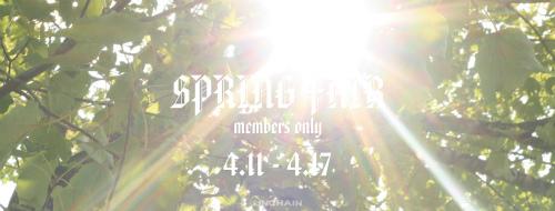 springfair.jpg