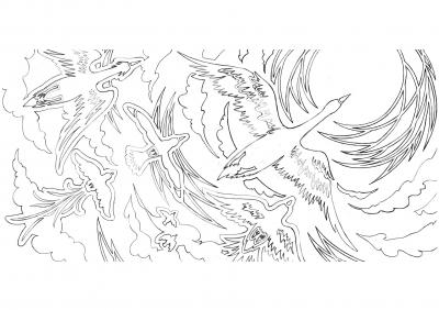 鳥ちゃんと、空。