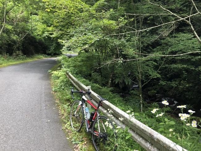 うるうカイロプラクティック、整体、鹿児島県、霧島市、サイクリング、