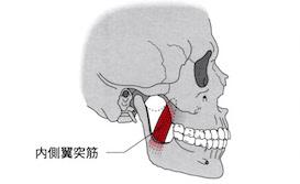 うるうカイロプラクティック院、カイロプラクティック、整体、鹿児島県、霧島市、国分、肩こり、顎関節症、アゴの痛み、クリック音、内側翼突筋