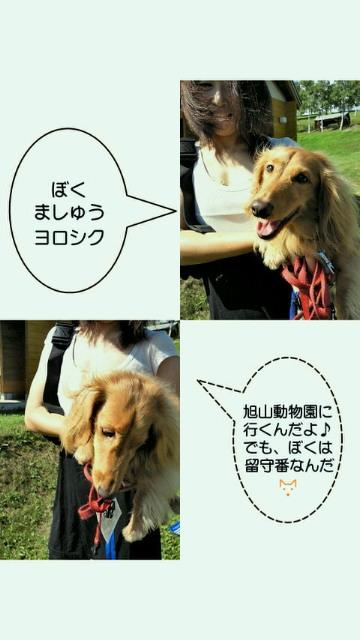 201008192021000.jpg