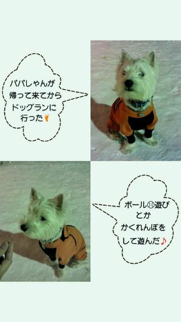 201101112237000.jpg