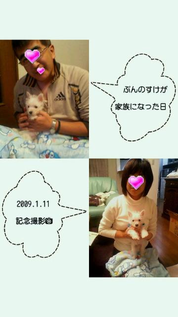 201109111349000.jpg