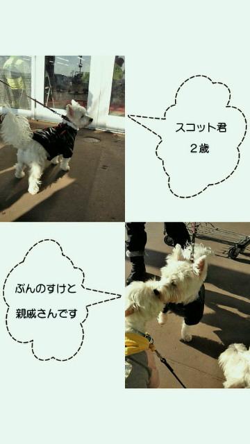 201111241839000.jpg