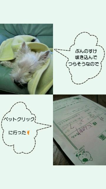 201201111817000.jpg