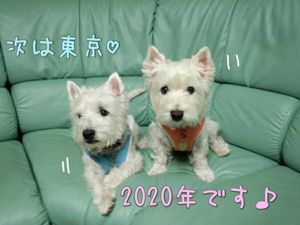 ���2020