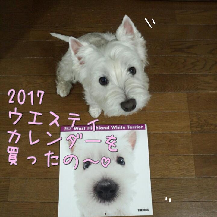 2017ウエスティカレンダー