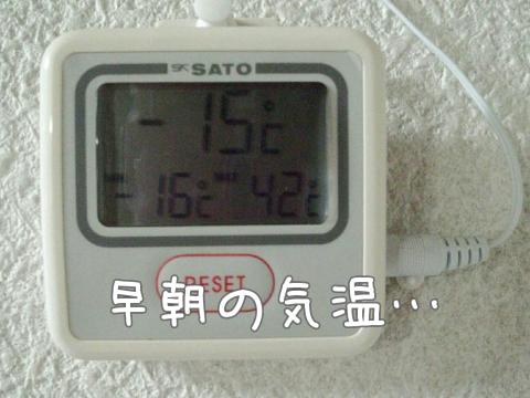 今朝の温度