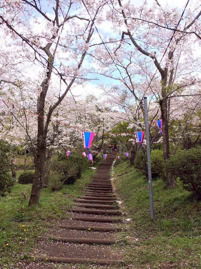 2017_0413_鶴舞公園_08.jpg