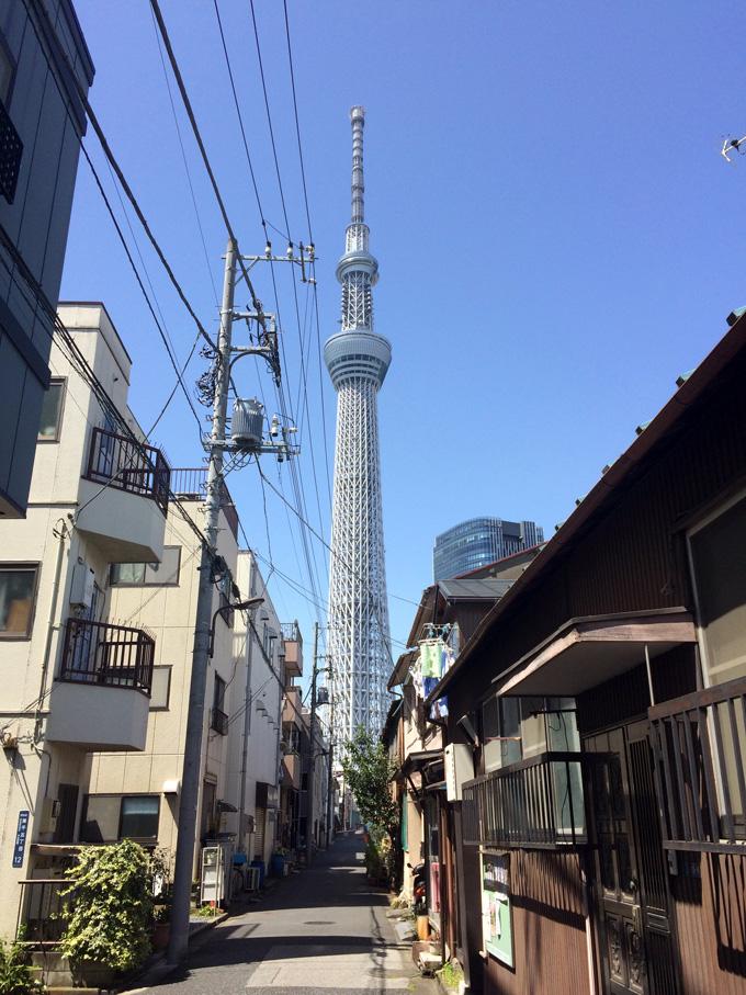 20170412_近所の桜_08.jpg