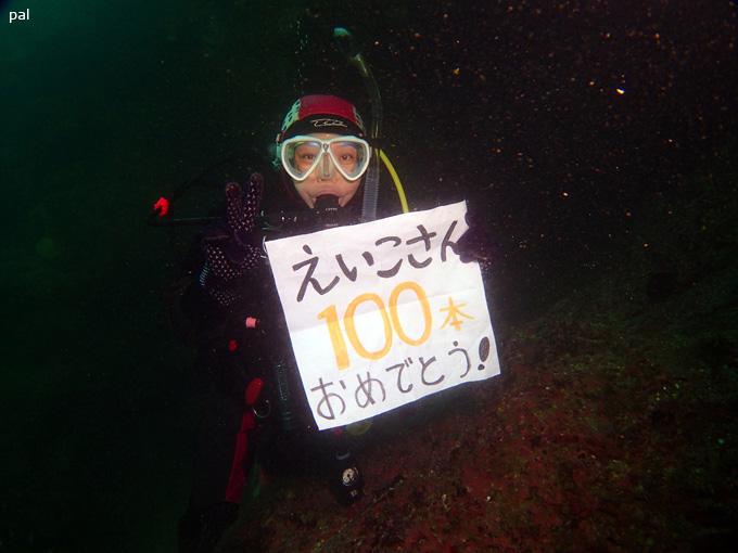 eikoさん100ダイブ!|女川でダイビング