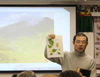 チベットの薬草と文化