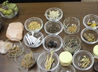 チベット医学で使う薬草と薬