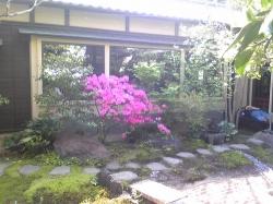 板橋・前野原温泉