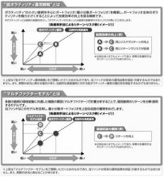 ネット証券専用ファンドシリーズ 新興国中小型株ファンド_2
