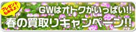 fair_banner61.jpg