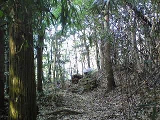 しんと静まり返った竹やぶと木々の中にひっそりと佇む社