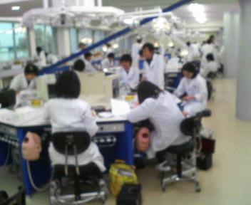 歯科大学実習風景