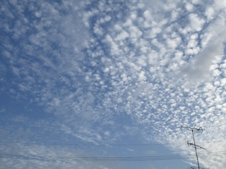 11.10.24の朝空