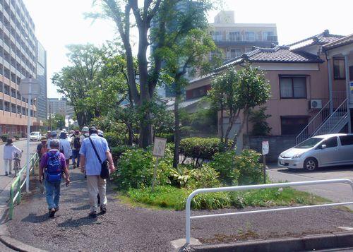 古信濃川11
