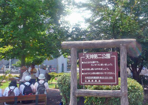 古信濃川12