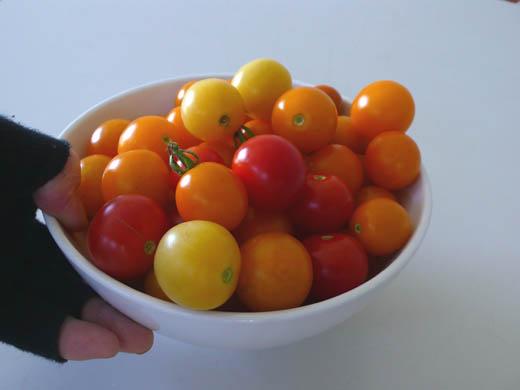 120806本日の収穫2.jpg