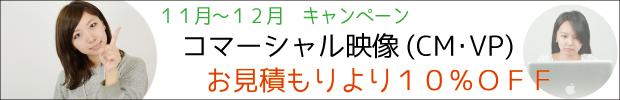 2012年11月キャンペーンバナー