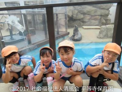 2017/06/29 5歳児の園外保育