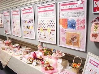 20101月展示