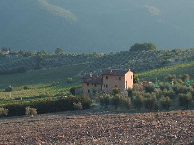 ヴェローニ農場