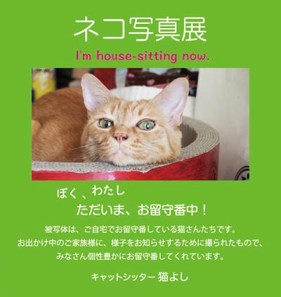 sasikomi11.jpg