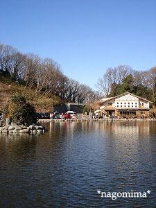 王禅寺1230 1
