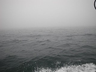 霧に包まれました。。。
