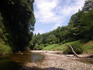 柿山田 川の風景