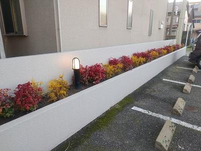 花壇植え替え後