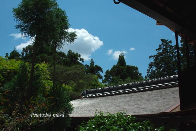 2010-05-30-203.jpg