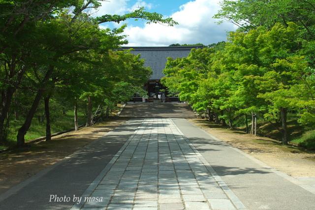 2010-05-30-351.jpg