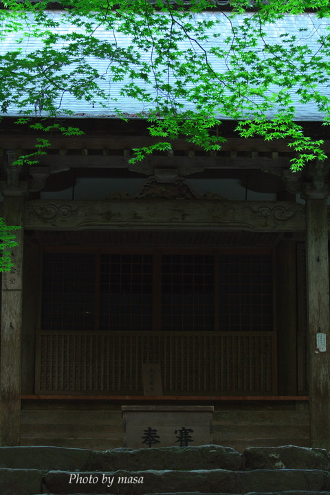 2010-05-30-449.jpg