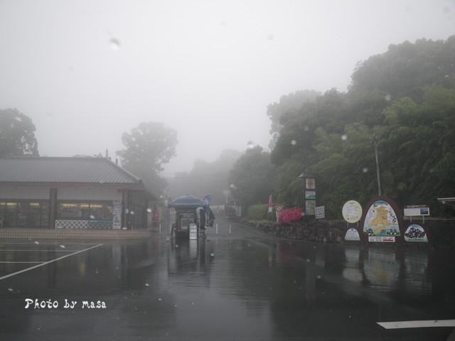 2010-06-13-018.jpg