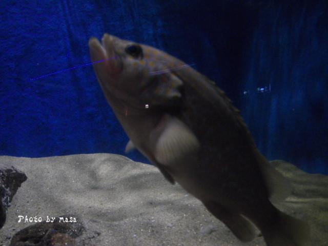 2010-06-13-062.jpg