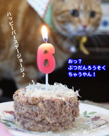 cake3031.jpg