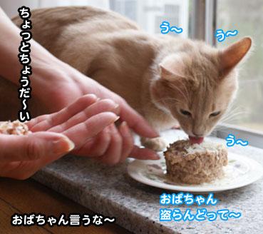 cake3042.jpg