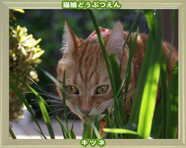 2011動物園2.jpg