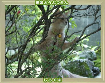 2011動物園3.jpg