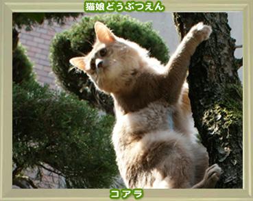 2011動物園4.jpg