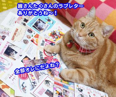 osechi2190.jpg