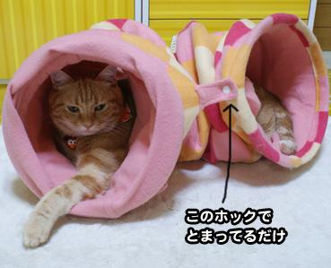 nobasu0367.jpg