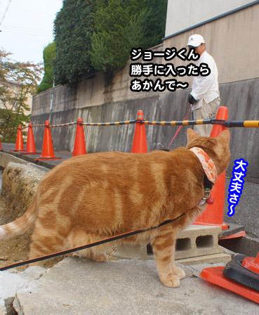 yunbo0986.jpg