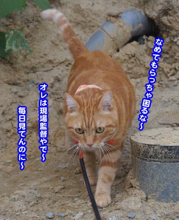 yunbo1016.jpg